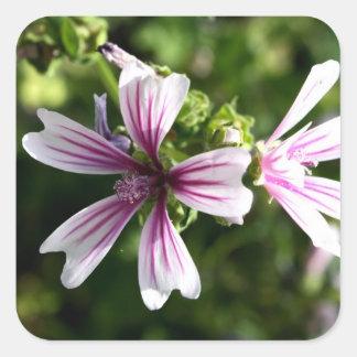 Square Floral Sticker