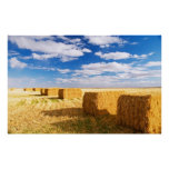 Square hay bales posters