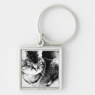 Square Keychain - Watchful Cat!