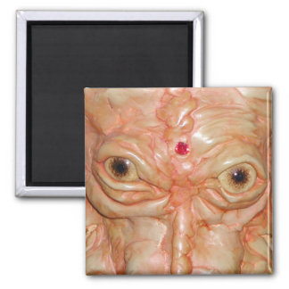 "Square Magnet, ""Brown Demon Eyes"" Magnet"