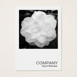 Square Photo 0120 - White Camelia Business Card