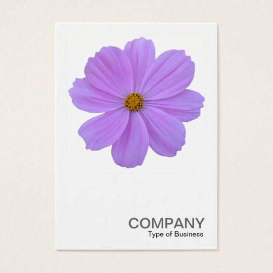 Square Photo 0171 - Purple Cosmos Flower Business Card