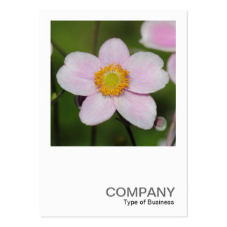 Square Photo 0489 - Pink Anemone Large Business Card