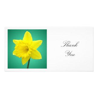 Square Photo - Daffodil on Green Card
