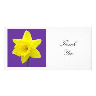 Square Photo - Daffodil on Purple Card