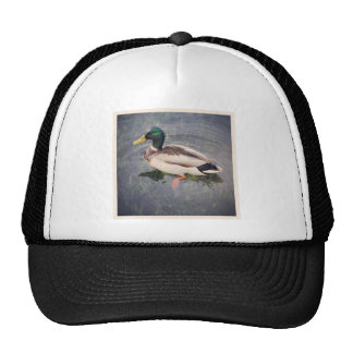 Square Photo - Mallard Duck Trucker Hat