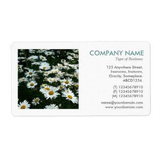 Square Photo - Shasta Daisies II Label
