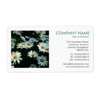 Square Photo - Shasta Daisies Label