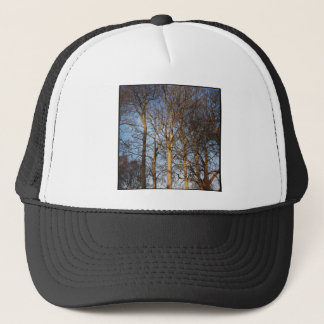 Square Photo - Sunlit Winter Trees Trucker Hat
