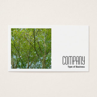Square Photo (v2) - Japanese Maple Business Card