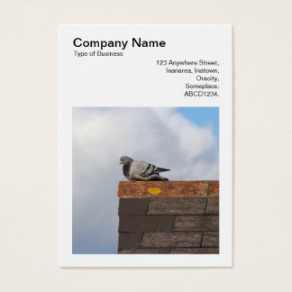 Square Photo (v3) - Good Morning Pigeon Business Card