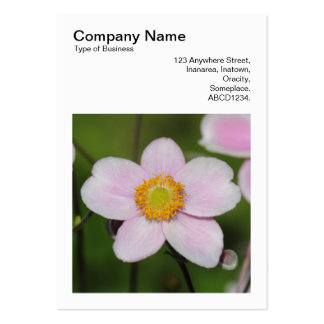 Square Photo (v3) - Pink Anemone Large Business Card