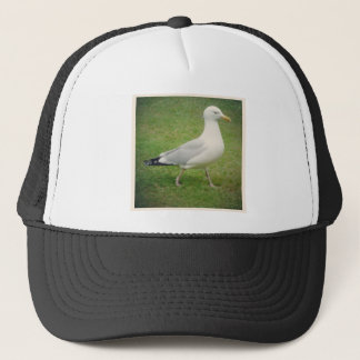 Square Photo - Walking Seagull Trucker Hat