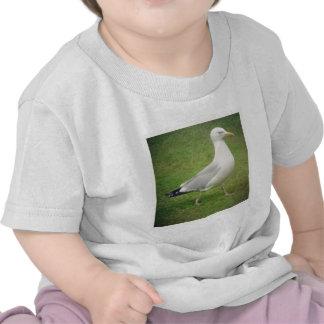Square Photo - Walking Seagull Tshirts