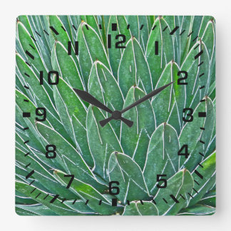 SQUARE WALL CLOCK WITH AGAVE PLANT