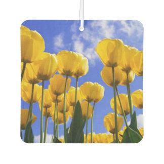 Square Yellow Tulips Air Freshener