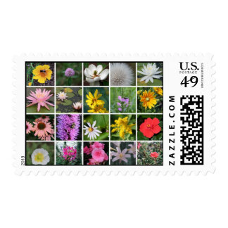 Squared Flowers Postage Stamp