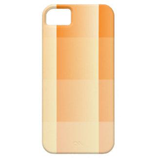 Squared geometric Design iPhone SE/5/5s Case