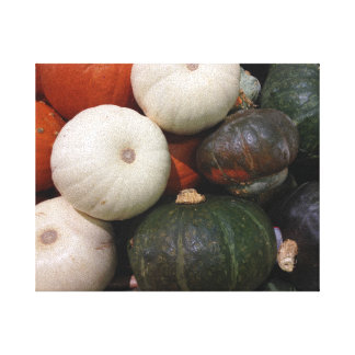 Squash and Gourds - Fresh from the Garden Canvas Print