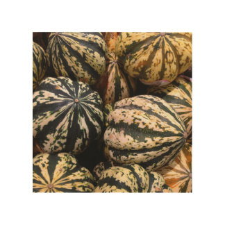 Squash and Gourds - Fresh from the Garden Wood Wall Art