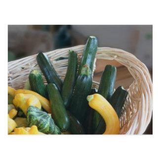 Squash And Zucchini Nature Postcards
