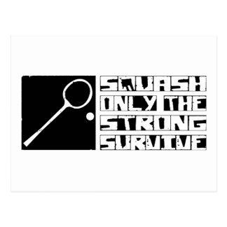 Squash Survive Postcard