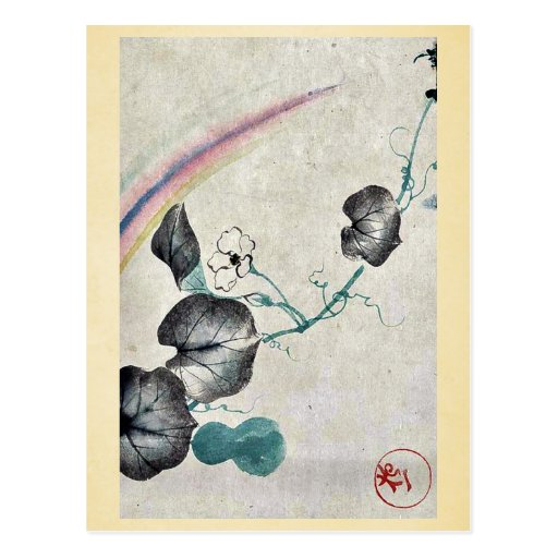 Squash vine with blossom and rainbow postcard