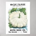 Squash Vintage Seed Packet Poster