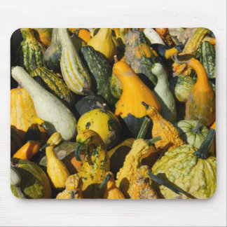 Squashes Mouse Pad