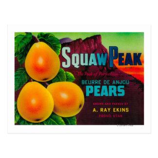 Squaw Peak Pear Crate LabelProvo, UT Postcard
