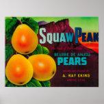 Squaw Peak Pear Crate LabelProvo, UT Poster