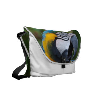 Squawking Parrot Courier Bag