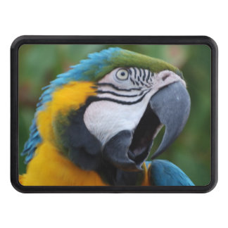 Squawking Parrot Tow Hitch Cover
