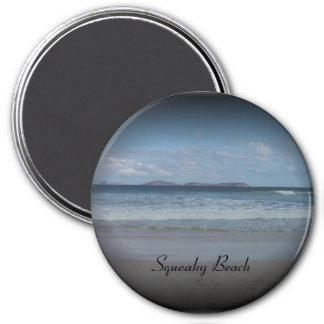 Squeaky Beach 1 Fridge Magnets