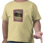 Squeaky Beach 2 T Shirts