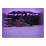 Squeaky Beach 4 Business Cards