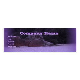 Squeaky Beach 4 Mini Business Card