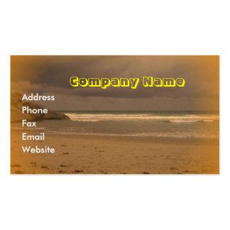 Squeaky Beach 5 Business Card