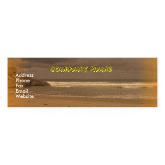 Squeaky Beach 5 Mini Business Card