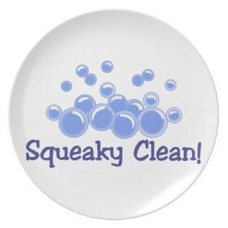 Squeaky Clean Melamine Plate