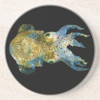 Squid Bobtail Dumpling Stubby Sepiola Atlantica Sandstone Coaster