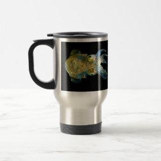 Squid Bobtail Dumpling Stubby Sepiola Atlantica Travel Mug