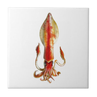 Squid Cephalopod no.12 Sea Creature Decor Ceramic Tile