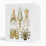 Squid & Octopus Binders
