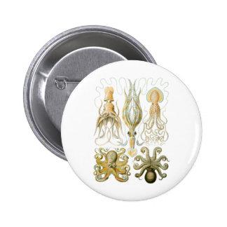 Squid Octopus Pinback Buttons