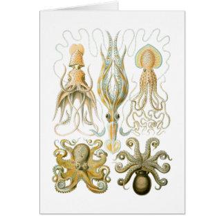 Squid & Octopus Card