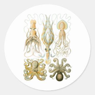 Squid & Octopus Classic Round Sticker