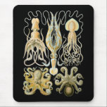 """Squid &amp; Octopus Mouse Pad<br><div class=""""desc"""">Gamochonia An old grouping of squids and octopods (NOT octopuses or octopi).</div>"""
