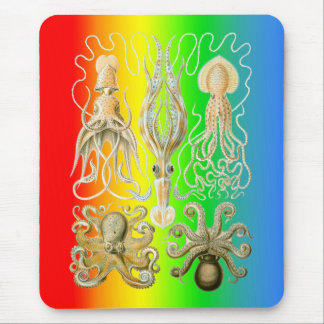Squids and Octopods Mouse Pad