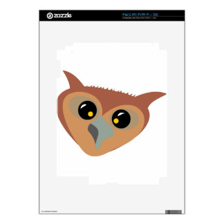 Squint-eyed Owl Decals For iPad 2